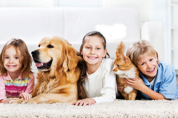 Діти та домашні улюбленці