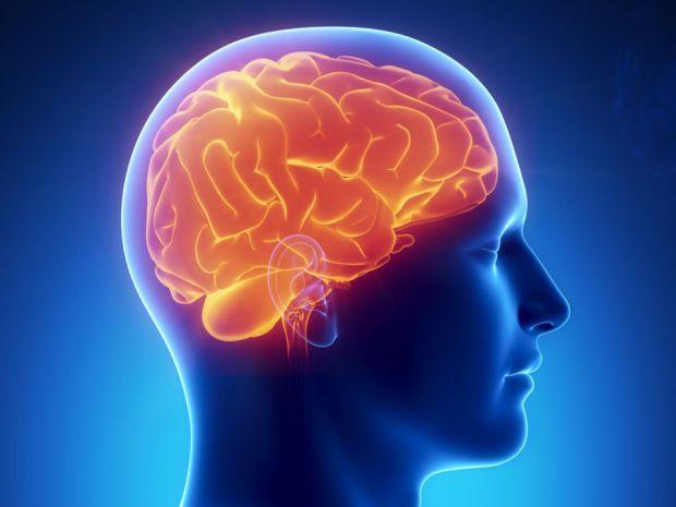 Дослідники з Університету Лаваля (Канада) провели експеримент, щоб з'ясувати, як мозок реагує на больові рухи після травм.