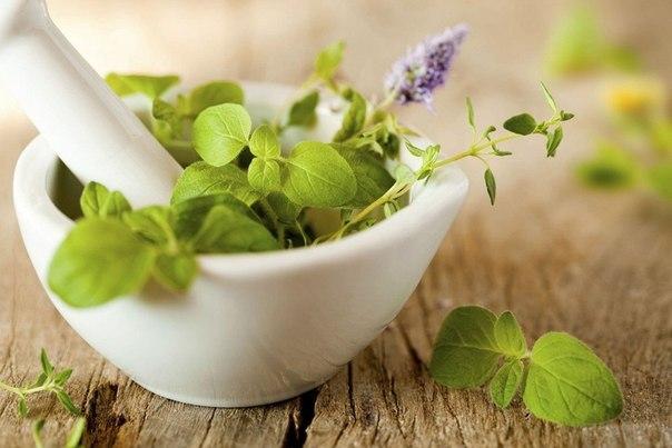 Для лікування астми потрібно багато сил і терпіння. А народні методи допоможуть прискорити одужання.