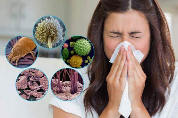 Лікарі виділили кілька маловідомих фактів про алергію.