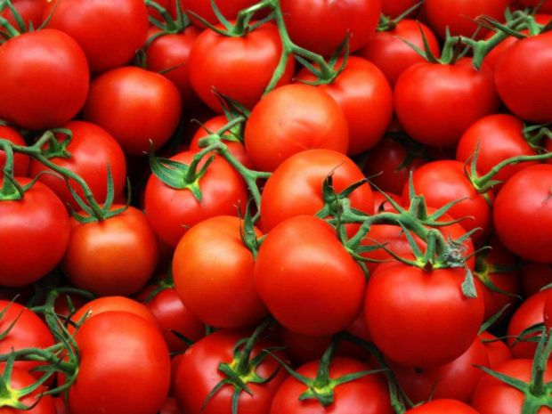 0288_pomidori.jpg (.78 Kb)