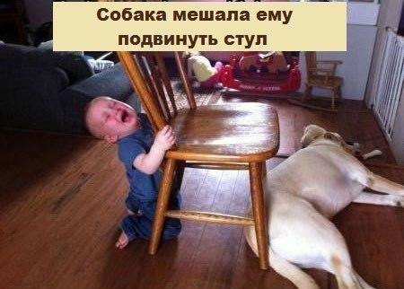 На одному з форумів батьки викладають фотографії своїх діток, які плачуть, із підписами, чому малеча заливається сльозами.