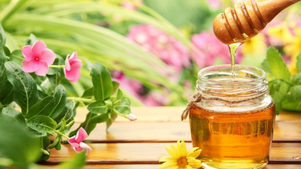 0596_food_honey_and_flowers_079321_.jpg (40.16 Kb)