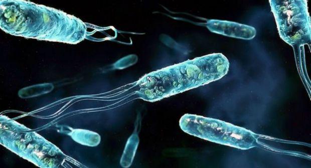 Дослідники з Британської асоціації сексуального здоров'я та ВІЛ (BASHH) виявили нову потенційну супербактеріі Mycoplasma genitalium (M. genitalium), я