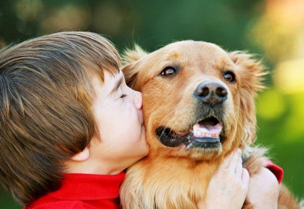 Пет-терапія за участю собак називається каністерапією. Собаки дуже віддані тварини, тому вони сприятливо впливають на людей. Часто діти, у яких діагно