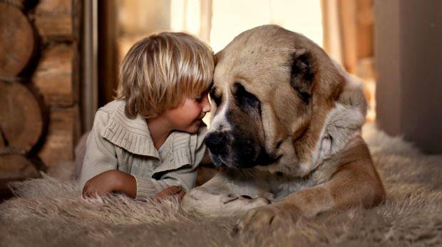 Якщо у вашого малюка виявили стафілокок, а у домі живе кішка або собака, не полінуйтеся і перевірте тварину у ветеринара. Не рідко саме вони стають пр