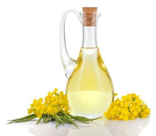 Дослідники з Ноттінгемського університету стверджують: канолова олія стимулює утворення у дитини коричневого жиру.