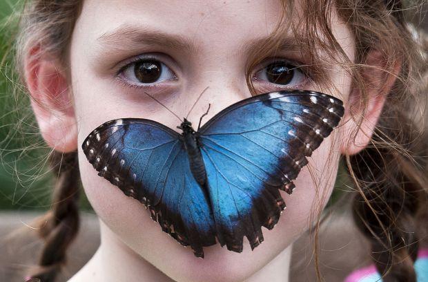 Науковці поділилися терапією, яка допоможе побороти страхами у дітей дошкільного віку - 4-6 років.