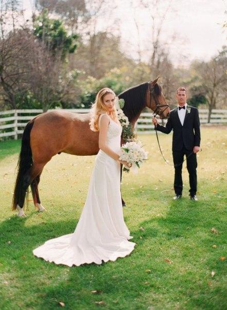 Коні зроблять Ваше весілля ще більш романтичним та неповторним. Погодьтесь, адже коні на весіллі - велика рідкість. Ці тварини принесуть удачу Вам та