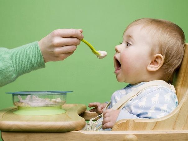Каші вводяться в харчування дитини після того, як вона повністю звикне до першого прикорму - овочевого пюре (не раніше, ніж через три тижні після його