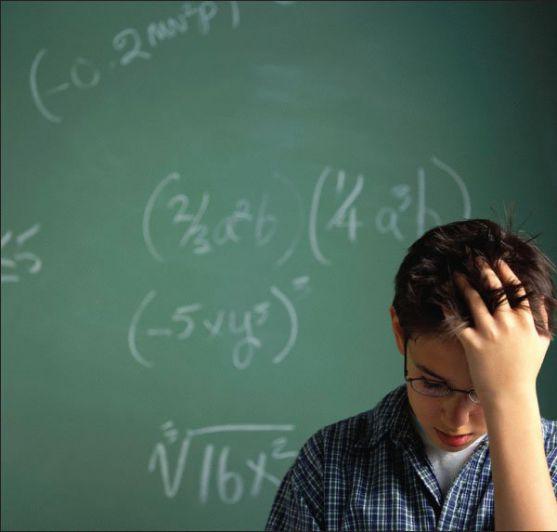 На успіхи дітей у математиці впливають особливості будови мозку.