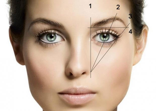 Часто представниці слабкої статі роблять акцент тільки на макіяж очей, при цьому вони абсолютно забувають про брови, які відіграють важливу роль у ств