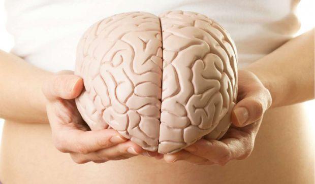 Наукові співробітники Далекосхідного федерального університету створили новий метод лікування онкології мозку.
