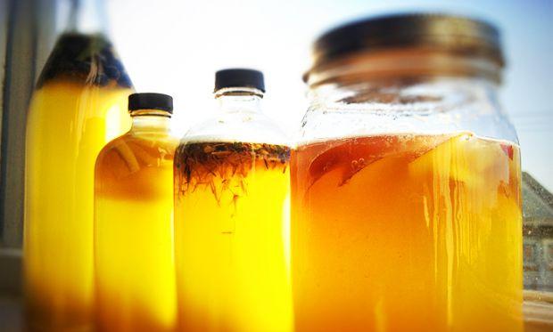 Звичайний чайний гриб здатен боротися з безліччю шкідливих речовин у нашому організмі та протистояти хворобам.