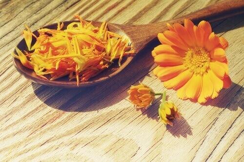 Для очищення шкіри, підвищення тонусу або для зняття подразнення шкіри добре використовувати настої із квітів. Настої з квітів застосовують для вмиван