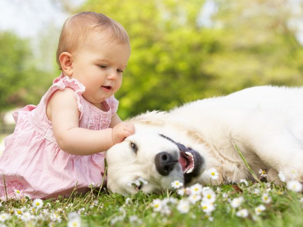 1868_little-beautiful-girl-with-dog_1600x1200.jpg (45.69 Kb)