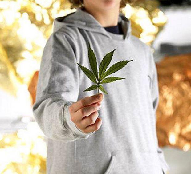 Канадські вчені підтвердили, що короткострокове вживання марихуани в підлітковому віці змінює об'єм сірої речовини в мозку.