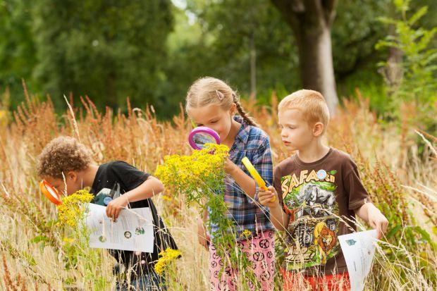 Чим зайняти дитину на природі, щоб не було їй і вам нудно, а навпаки - цікаво?