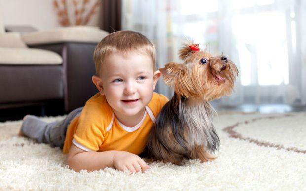 Науковці дійшли висновку, що наявність кішки чи собаки в домі суттєво знижує ризик дитячих захворювань.