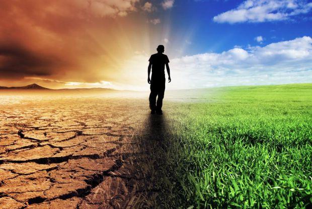 Науковці з Токійського університету розповіли про підсумки дослідження, де вивчалася дія зміни клімату на імунну систему людини.