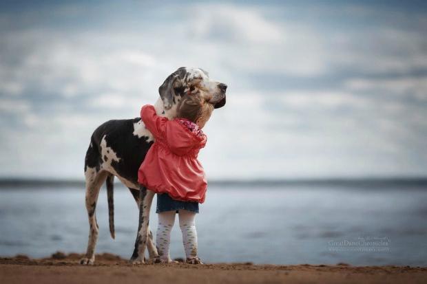 Поспішаю поділитися своїми рецептами. У всякому разі, з собаками вони працюють. Повідомляє сайт Наша мама.
