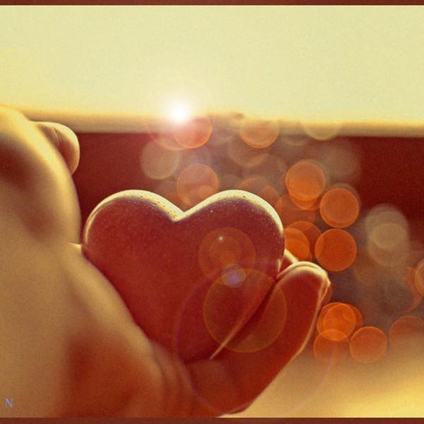 Американські вчені дізналися, що люди, які втратили кохану людину, входять до групи ризику смерті від проблем з серцем.