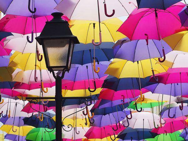 2420_138cce8-umbrella3.jpg (65.39 Kb)