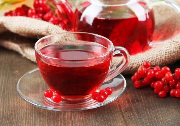 Чай з калиною здатний зміцнювати організм і лікувати від простуди та інших захворювань.