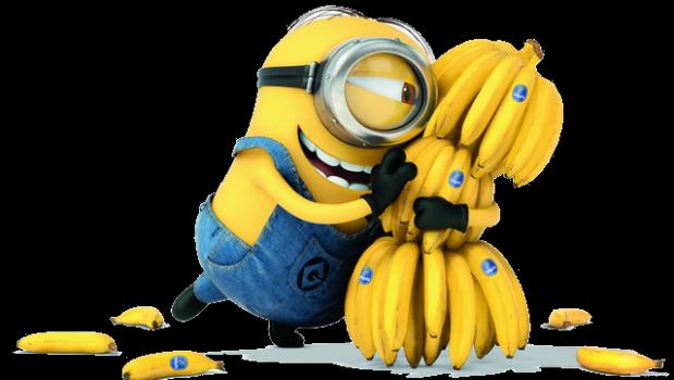 2528_108696029_3720816_banani8.png (230.16 Kb)