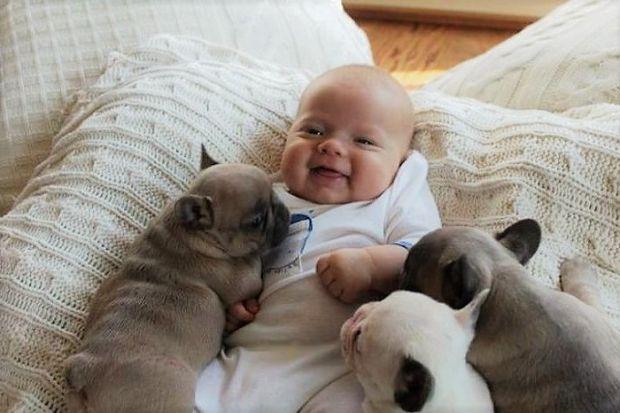 Вчені дізналися, чому люди відчувають розчулення побачивши немовлят і дитинчат тварин.
