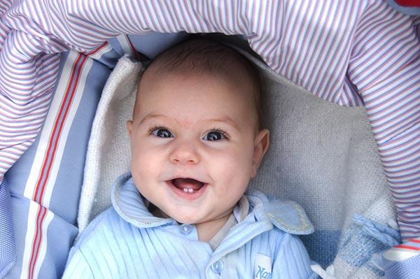 2762_baby_teeth.jpg (54.61 Kb)