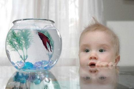 Влаштуйте свято вашій дитині, подаруйте справжнє захоплення, яке можливо стане його захопленням на все життя.