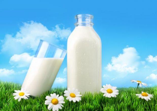 Дієтологи в один голос говорять про те, що білкова їжа додає енергії, а в молоці, як відомо, їх предостатньо.Медики переконані, що збільшення ваги і б