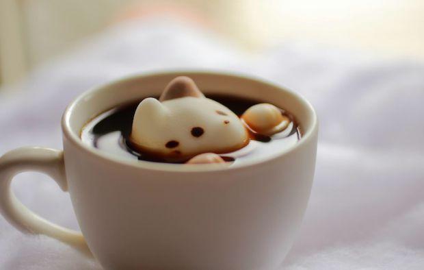 Навіть солодощі в країні висхідного сонця - особливі. В онлайн-магазині Yawahada продається незвичайний зефір, виконаний в котячому стилі. Маленькі фі