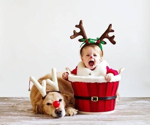 Справжня дружбаГосподарі домашніх улюбленців підтвердять, що тварини з особливою теплотою та любов'ю ставляться до маленьких чад. Тому сьогодні