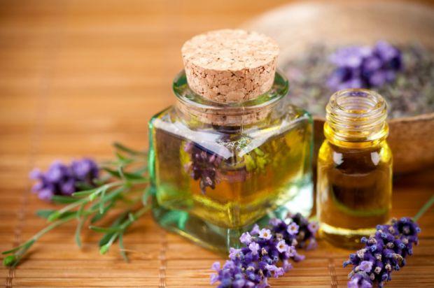 Олію материнки використовують як для краси і здоров'я, так і в якості запашної спеції.