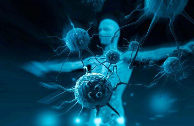 Японські вчені повідомили, що глобальне потепління чинить руйнівну дію на людський імунітет.