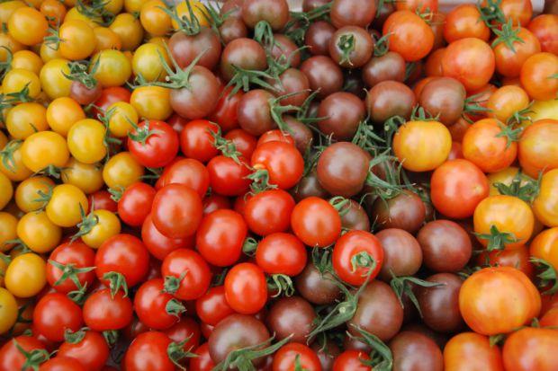 3739_pomidori.jpg (55.95 Kb)
