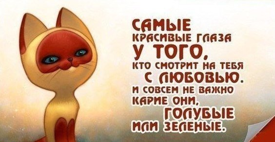 3774_cnebkdi3mwk.jpg (41.59 Kb)