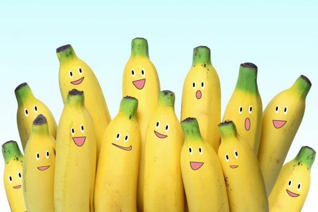 Офіційних досліджень в даній області не проводили, але є дані про дівчину, яка харчувалася протягом 12 днів одними бананами.