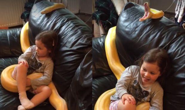 Дівчинка зовсім не боїться звіра.