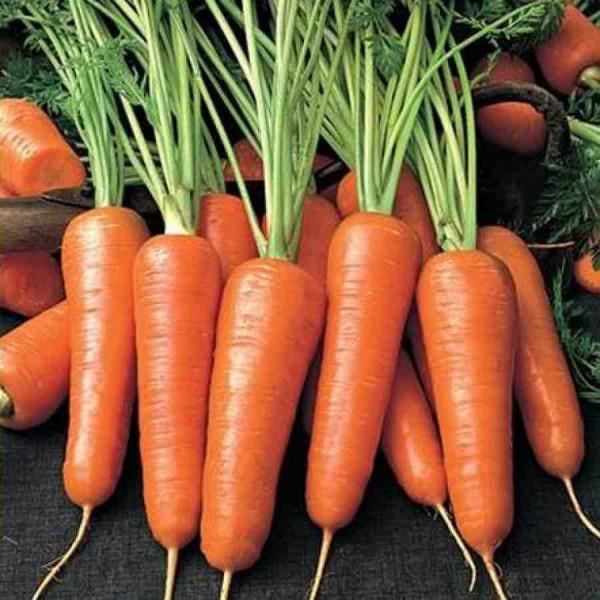 Чому потрібно часто їсти моркву? Чим вона така корисна? Читайте у матеріалі.