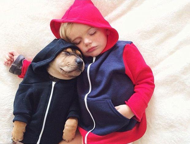Давно відомо, що домашні улюбленці позитивно впливають на дітей, іноді навіть стають малюкам найкращими друзями.Більше того, лікарі-онкологи переконал