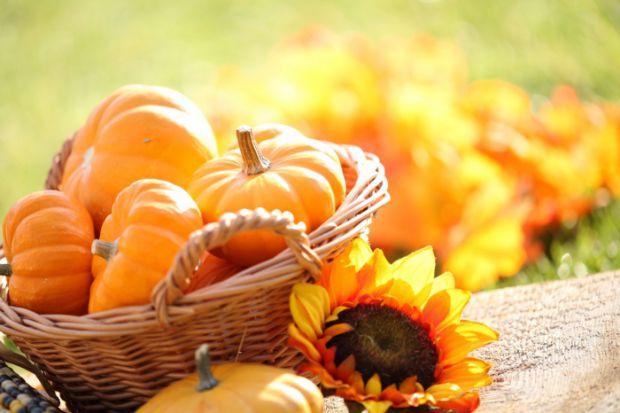 Гарбуз - дієтичний овоч з дуже низькою калорійністю і достатньою кількістю вітамінів А, Е, С, В, заліза, цинку, кальцію, пантотенової і фолієвої кисло