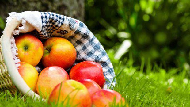 Таке запашне, соковите і корисне. Яблука багаті на залізо, вітамін C, фосфор, калій, кальцій, натрій, барій, цинк. Плоди зміцнюють імунну систему. Від