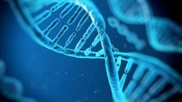 Найближчим часом батьки зможуть завчасно запрограмувати зовнішність дитини шляхом редагування його генома.