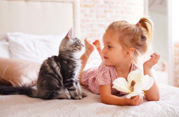 Діти люблять домашніх тварин. І рано чи пізно з їх проханням завести вихованця стикаються майже всі батьки. Спілкування з тваринами, догляд за ними ро