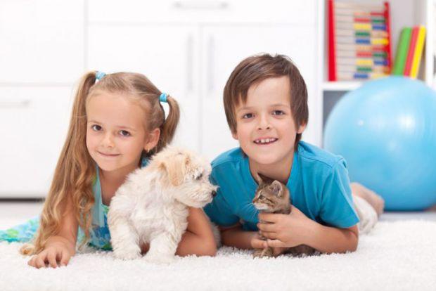 Академіки повідомили про методи подолання алергічної астми у дітей, а також про її причини появи.