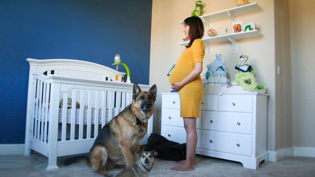 Чоловік щодня знімав свою вагітну дружину, щоб показати майбутньому синові, як сильно вони його чекали.