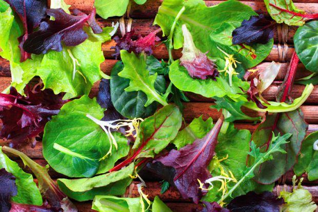 29_zelen-salat.jpg (75.04 Kb)
